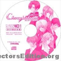 Sega Direct CD